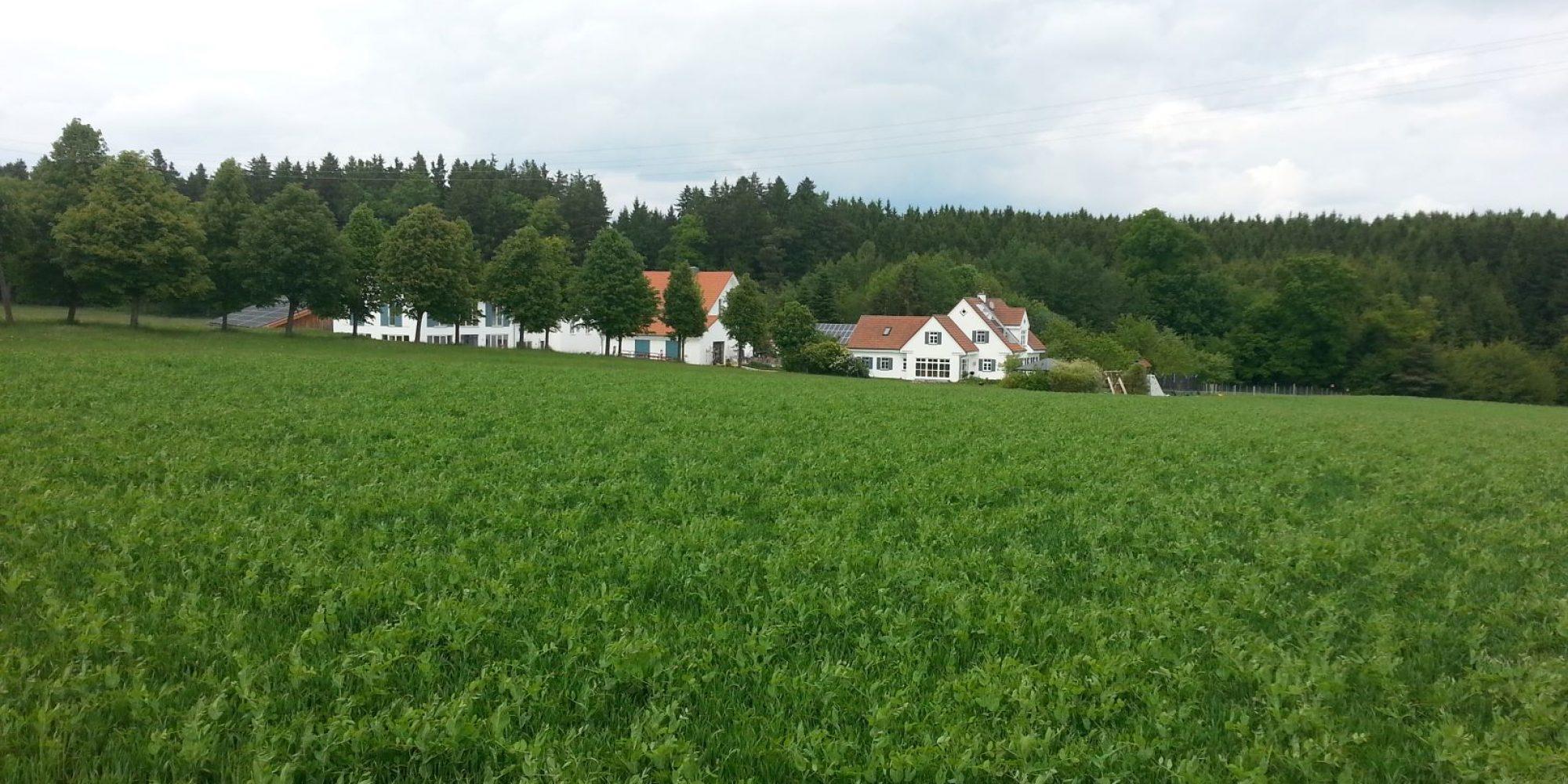 Außenaufnahme Kunst- und Erlebnisbauernhof Ferlhof