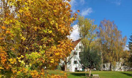 Außenbereich Gast- und Tafernwirtschaft Niederdorf